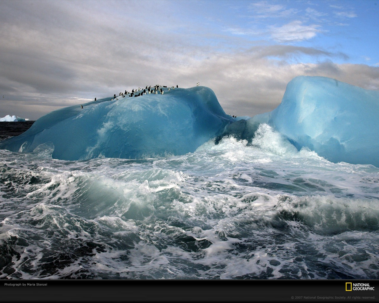 Bestwallpapers2009fromNationalGeographic_24