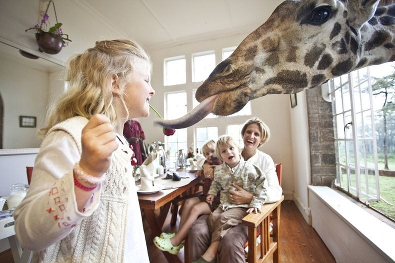giraffe-manor-4[2]