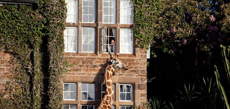 giraffe-manor-6[5]