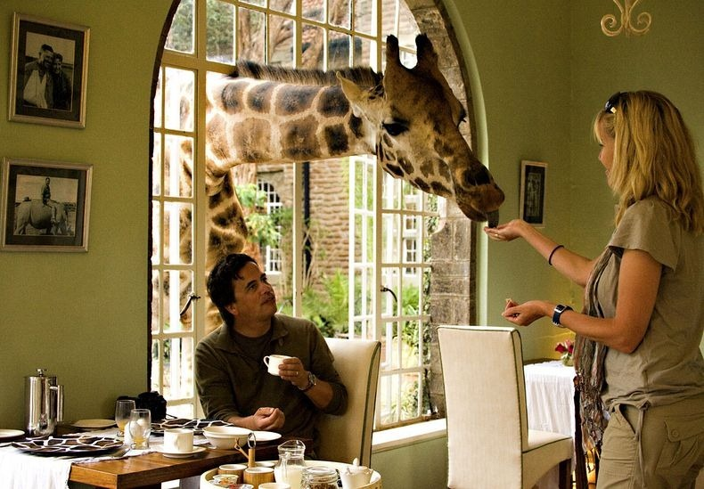 giraffe-manor-8[2]